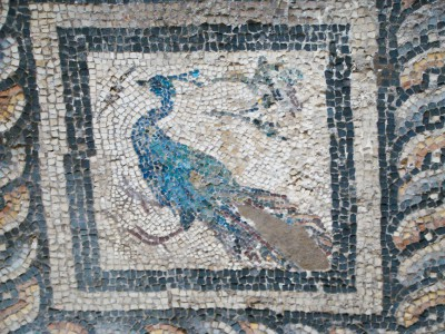detail_of_the_mosaic_floor_in_the_villa_of_the_birds_-ii-_-6761910343-.jpg
